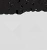 Logo brand Pragma